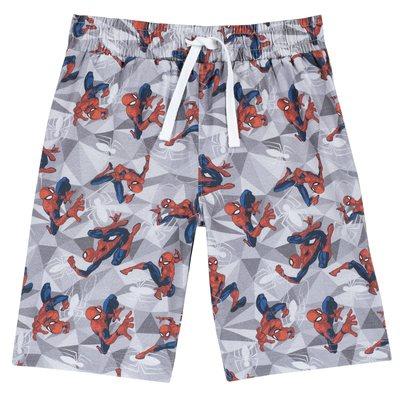 Bermuda Spider-man